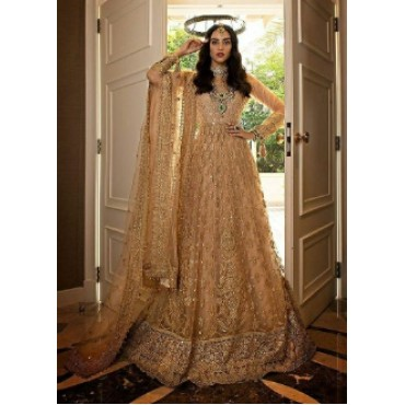Butterfly net with heavy embroidery work and mirror work pakistani gown dark cream